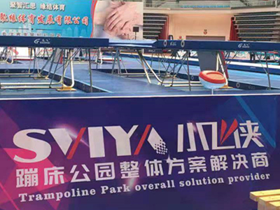 SVIYA Group Support the 2019 National U Series Teenager Trampoline Championship